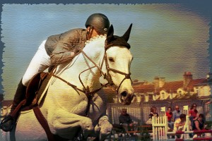 texturized show jumping