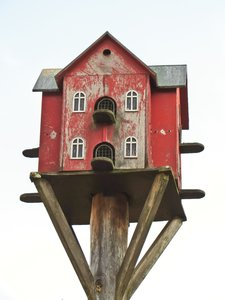 bird house for doves