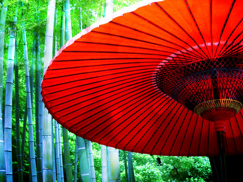 Red Umbrella and bamboo